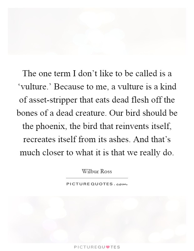 The one term i dont like to be called is a vulture the one term i dont like to be called is a vulture share bird calls quotesbird phoenix voltagebd Images