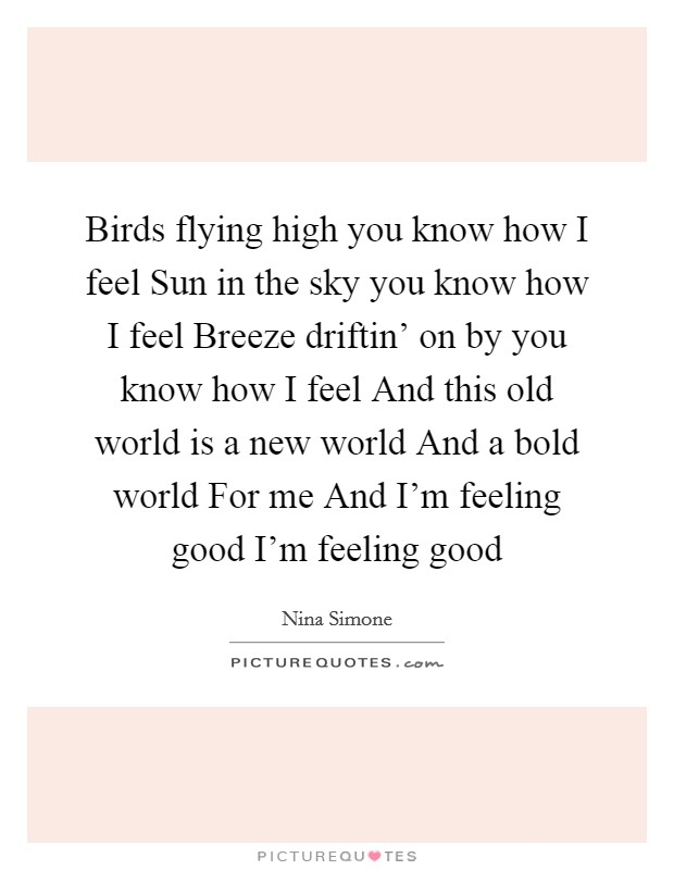 Bird Flying Quotes & Sayings | Bird Flying Picture Quotes - photo#4