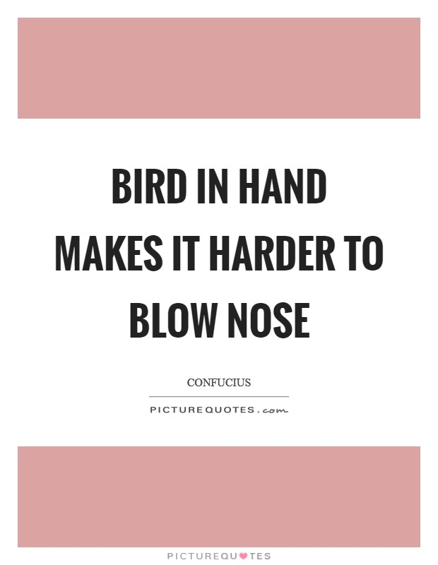 Bird in hand makes it harder to blow nose Picture Quote #1