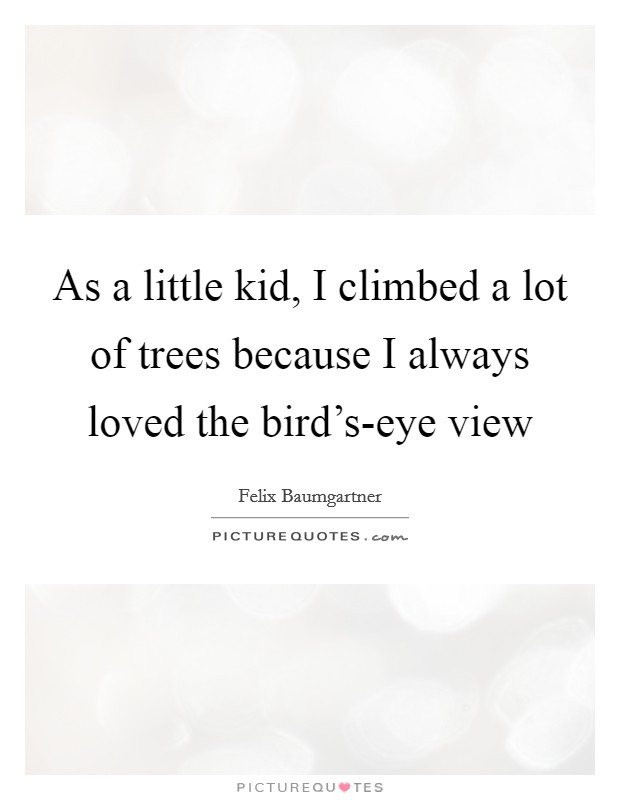 As a little kid, I climbed a lot of trees because I always loved the bird's-eye view Picture Quote #1