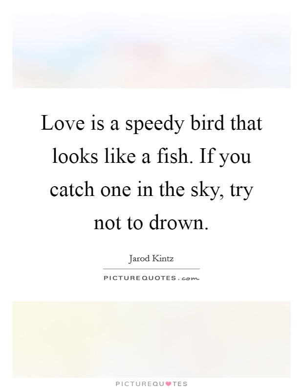 Love is a speedy bird that looks like a fish. If you catch one in the sky, try not to drown Picture Quote #1