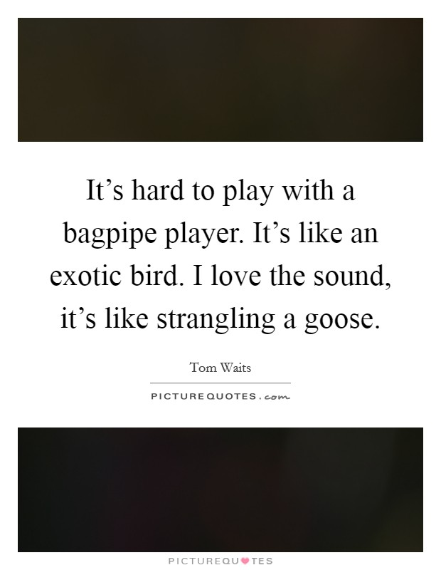 It's hard to play with a bagpipe player. It's like an exotic bird. I love the sound, it's like strangling a goose Picture Quote #1
