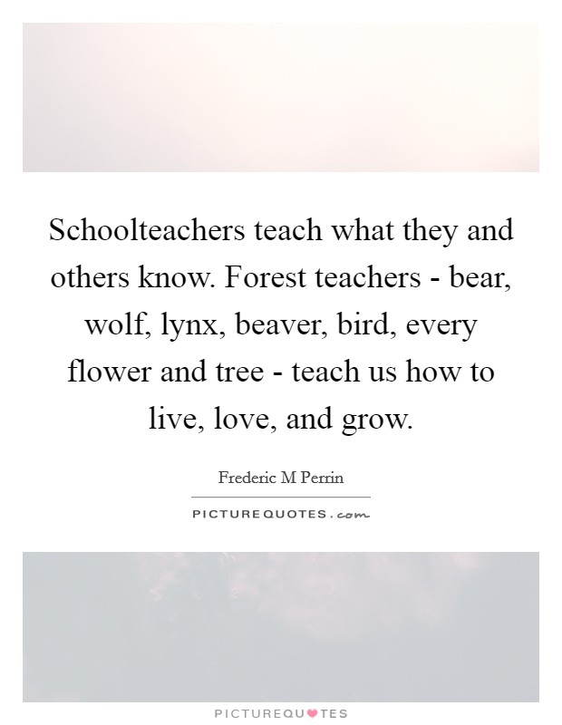 Schoolteachers teach what they and others know. Forest teachers - bear, wolf, lynx, beaver, bird, every flower and tree - teach us how to live, love, and grow Picture Quote #1