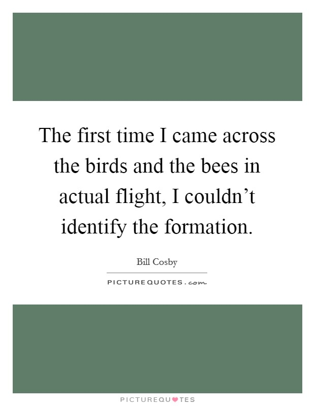 The first time I came across the birds and the bees in actual flight, I couldn't identify the formation Picture Quote #1