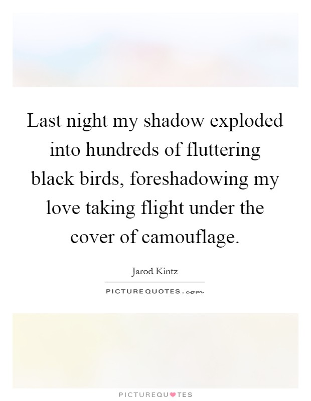 Last night my shadow exploded into hundreds of fluttering black birds, foreshadowing my love taking flight under the cover of camouflage Picture Quote #1
