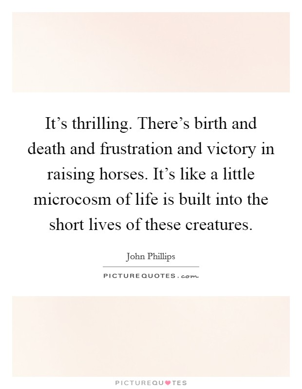It's thrilling. There's birth and death and frustration and victory in raising horses. It's like a little microcosm of life is built into the short lives of these creatures Picture Quote #1