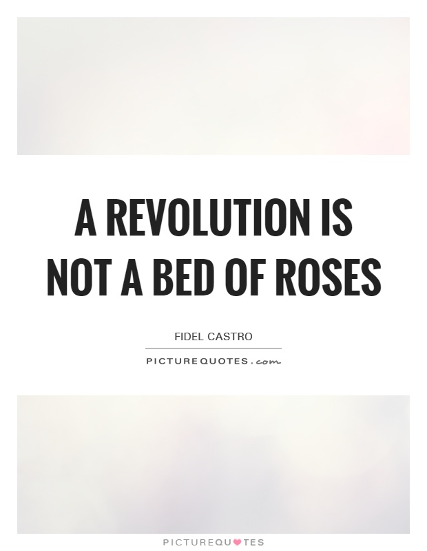 A revolution is not a bed of roses Picture Quote #1