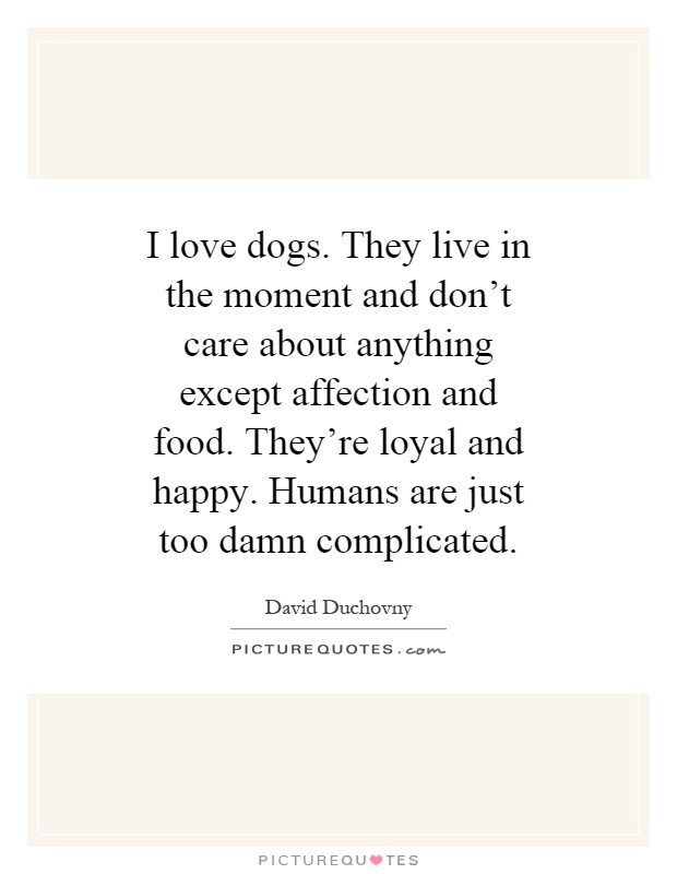 I love dogs. They live in the moment and don't care about anything except affection and food. They're loyal and happy. Humans are just too damn complicated Picture Quote #1