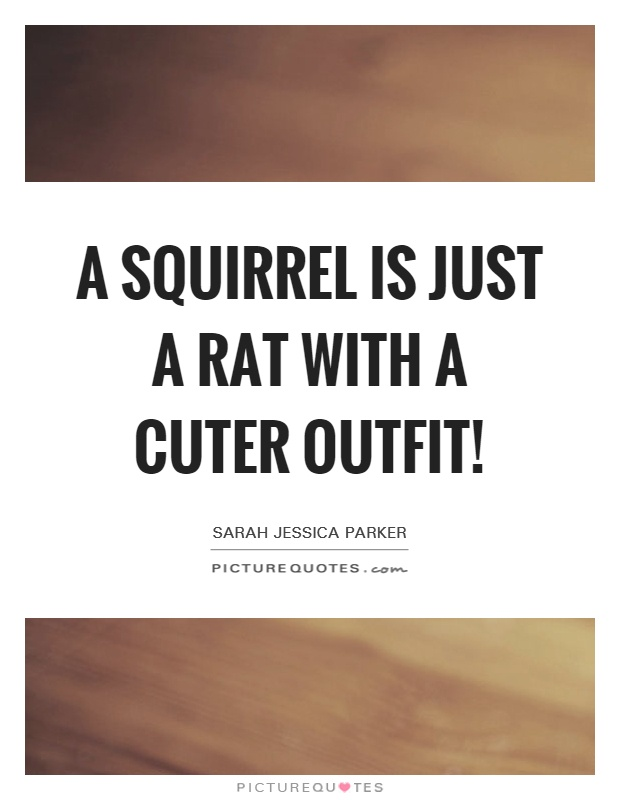 A squirrel is just a rat with a cuter outfit! Picture Quote #1
