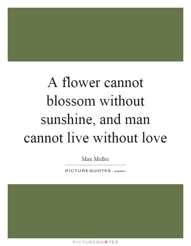 A flower cannot blossom without sunshine, and man cannot live without love Picture Quote #1