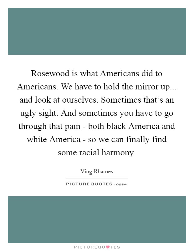Rosewood is what Americans did to Americans. We have to hold the mirror up... and look at ourselves. Sometimes that's an ugly sight. And sometimes you have to go through that pain - both black America and white America - so we can finally find some racial harmony Picture Quote #1