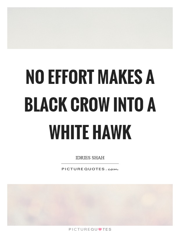 No effort makes a black crow into a white hawk Picture Quote #1