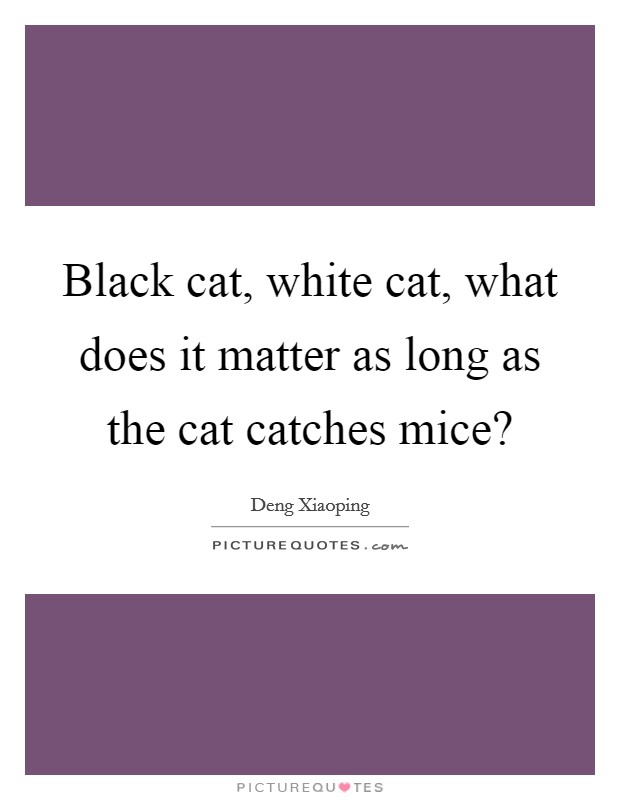 Black cat, white cat, what does it matter as long as the cat catches mice? Picture Quote #1