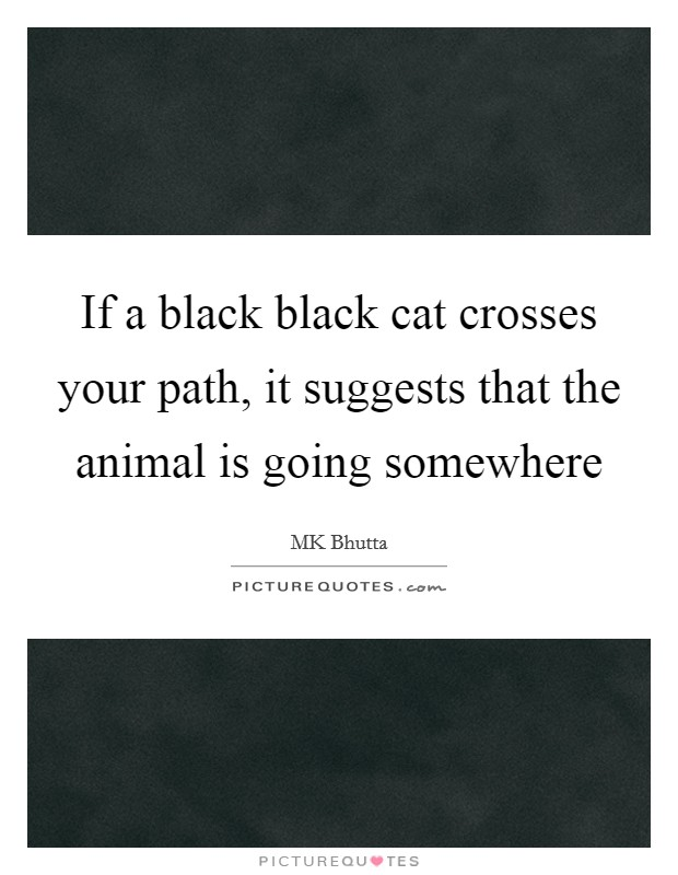 If a black black cat crosses your path, it suggests that the animal is going somewhere Picture Quote #1