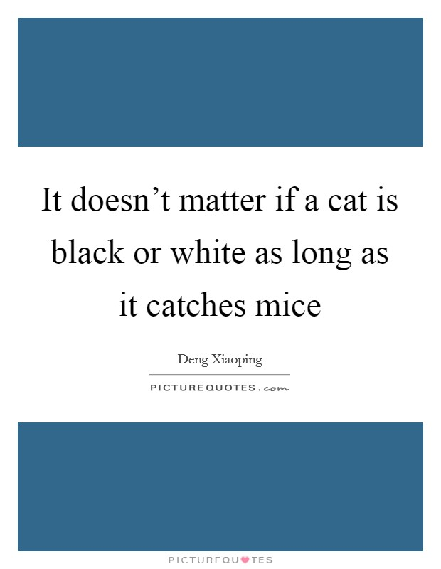 It doesn't matter if a cat is black or white as long as it catches mice Picture Quote #1