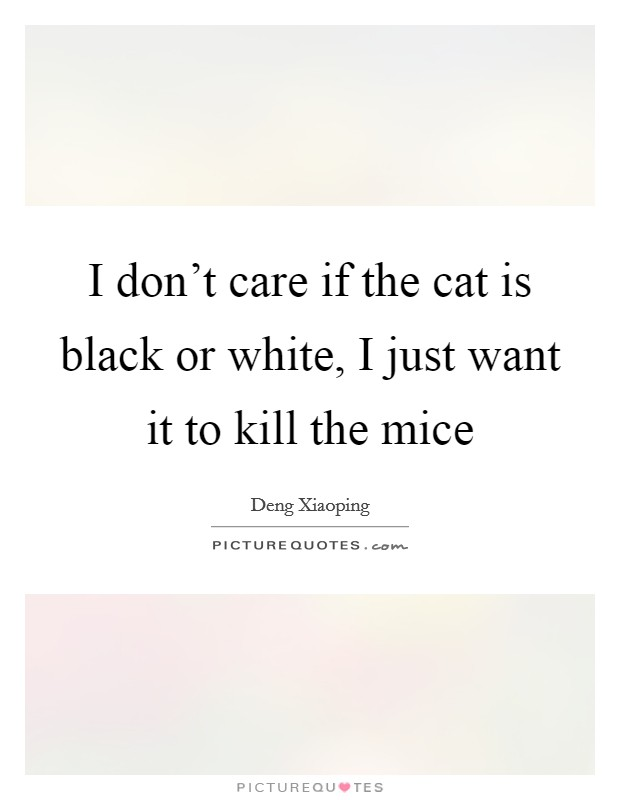 I don't care if the cat is black or white, I just want it to kill the mice Picture Quote #1