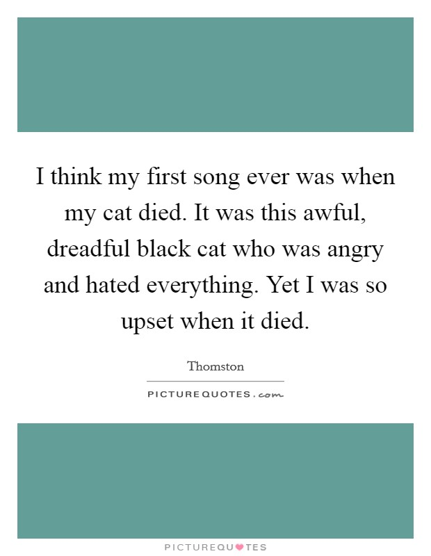 I think my first song ever was when my cat died. It was this awful, dreadful black cat who was angry and hated everything. Yet I was so upset when it died Picture Quote #1