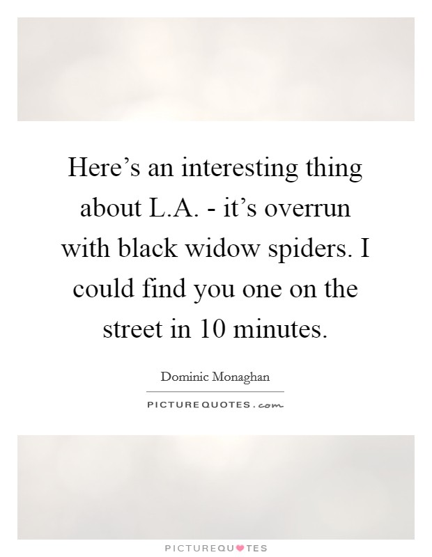 Here's an interesting thing about L.A. - it's overrun with black widow spiders. I could find you one on the street in 10 minutes Picture Quote #1