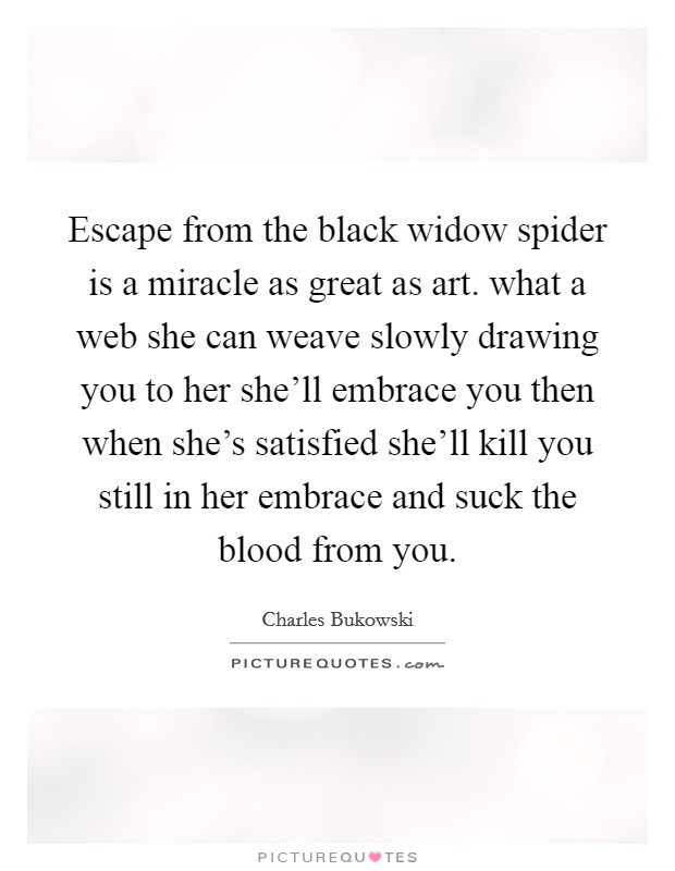 Escape from the black widow spider is a miracle as great as art. what a web she can weave slowly drawing you to her she'll embrace you then when she's satisfied she'll kill you still in her embrace and suck the blood from you Picture Quote #1