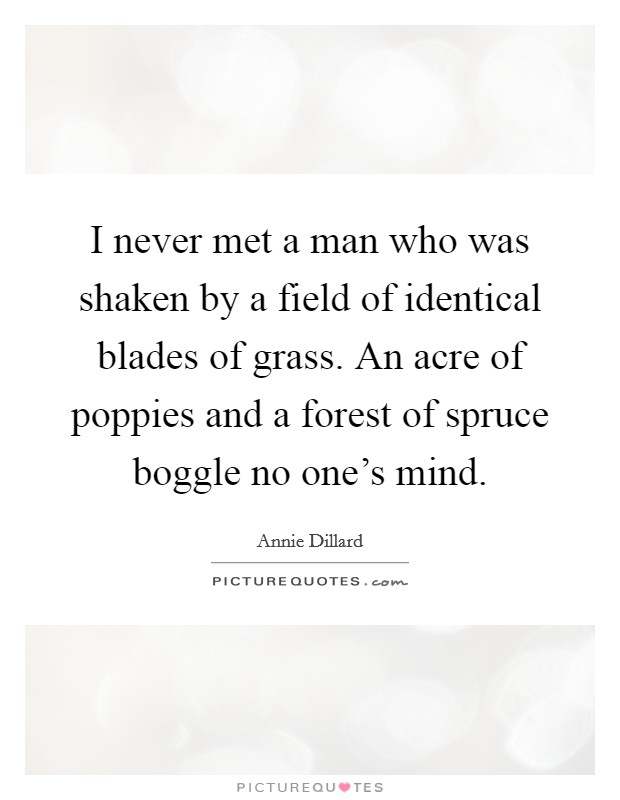 I never met a man who was shaken by a field of identical blades of grass. An acre of poppies and a forest of spruce boggle no one's mind Picture Quote #1