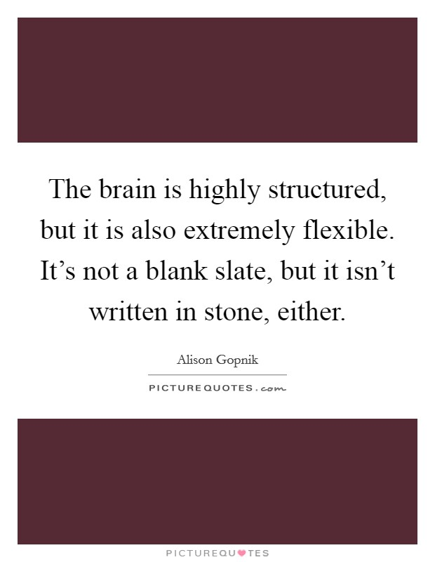 The brain is highly structured, but it is also extremely flexible. It's not a blank slate, but it isn't written in stone, either Picture Quote #1