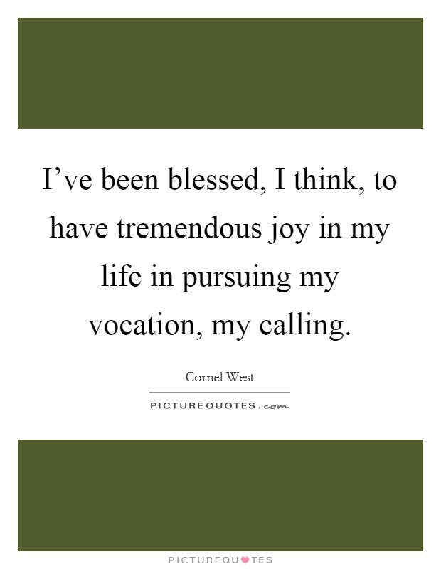 I've been blessed, I think, to have tremendous joy in my life in pursuing my vocation, my calling Picture Quote #1