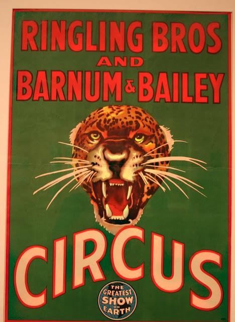 Circus Quote 11 Picture Quote #1