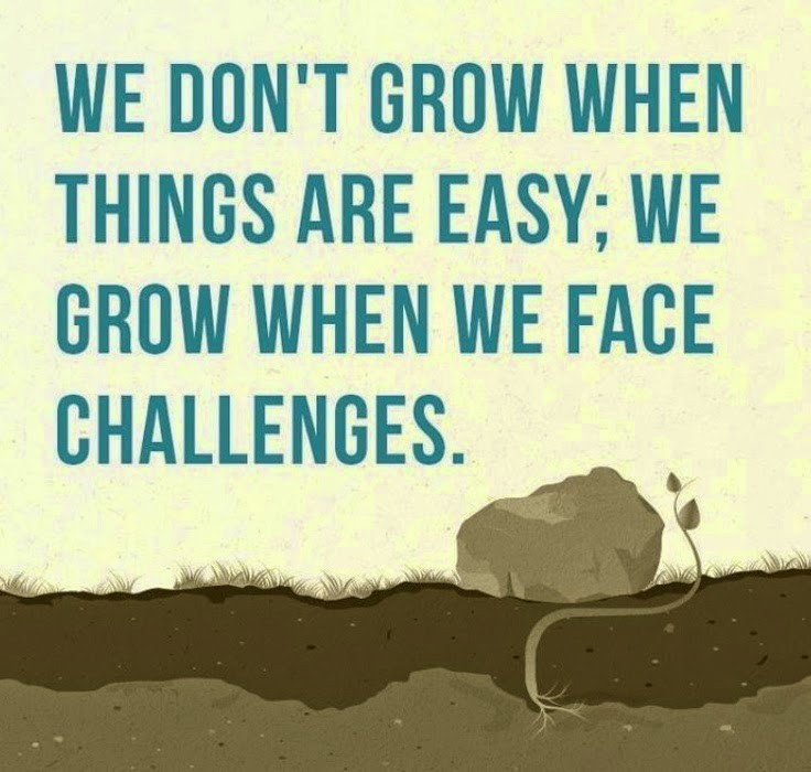 Positive Quote Magnificent Positive Quote For Life Challenges  Quote Number 891882  Picture