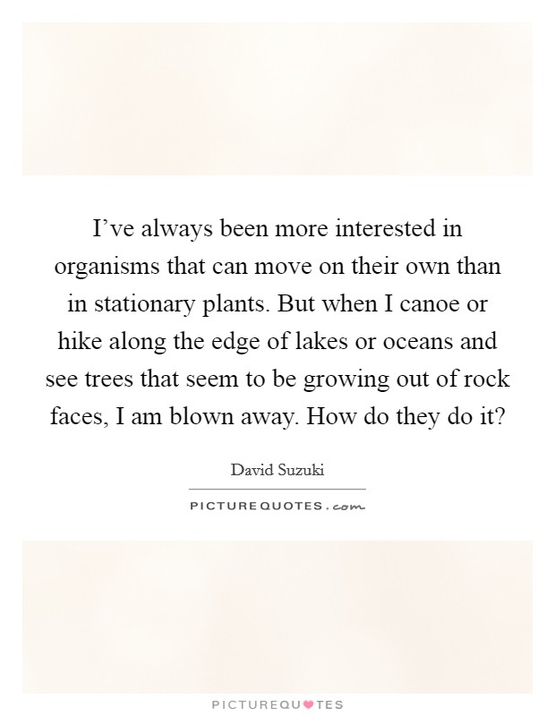 I've always been more interested in organisms that can move on their own than in stationary plants. But when I canoe or hike along the edge of lakes or oceans and see trees that seem to be growing out of rock faces, I am blown away. How do they do it? Picture Quote #1