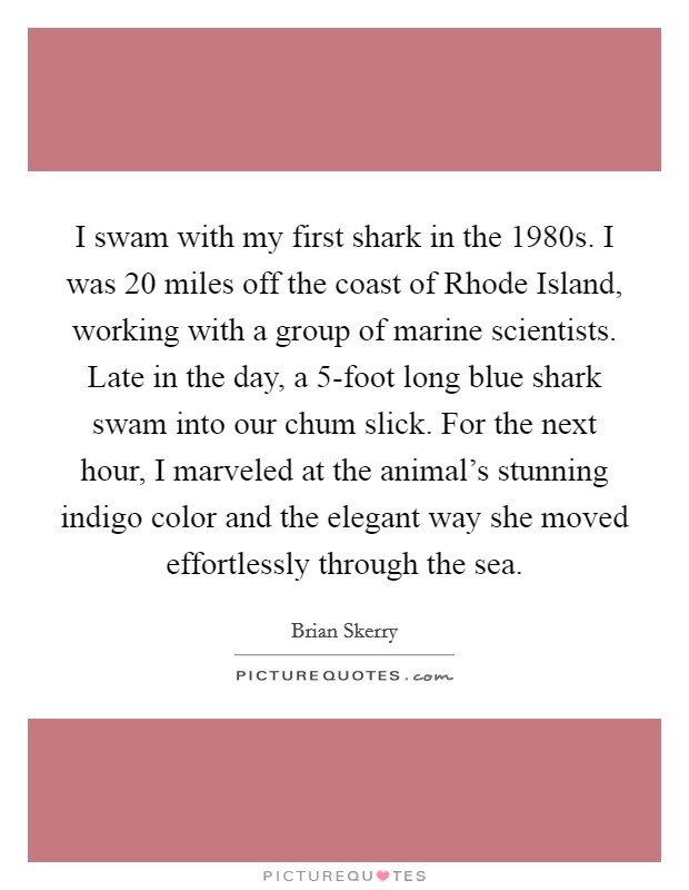 I swam with my first shark in the 1980s. I was 20 miles off the coast of Rhode Island, working with a group of marine scientists. Late in the day, a 5-foot long blue shark swam into our chum slick. For the next hour, I marveled at the animal's stunning indigo color and the elegant way she moved effortlessly through the sea Picture Quote #1