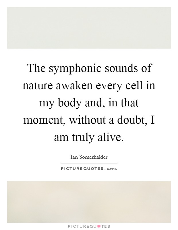 The symphonic sounds of nature awaken every cell in my body and, in that moment, without a doubt, I am truly alive Picture Quote #1