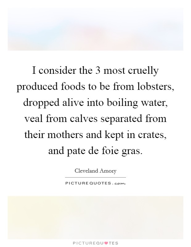 I consider the 3 most cruelly produced foods to be from lobsters, dropped alive into boiling water, veal from calves separated from their mothers and kept in crates, and pate de foie gras Picture Quote #1