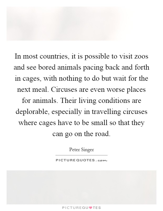 In most countries, it is possible to visit zoos and see bored animals pacing back and forth in cages, with nothing to do but wait for the next meal. Circuses are even worse places for animals. Their living conditions are deplorable, especially in travelling circuses where cages have to be small so that they can go on the road Picture Quote #1