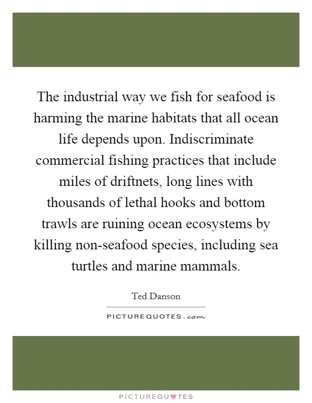 The industrial way we fish for seafood is harming the marine habitats that all ocean life depends upon. Indiscriminate commercial fishing practices that include miles of driftnets, long lines with thousands of lethal hooks and bottom trawls are ruining ocean ecosystems by killing non-seafood species, including sea turtles and marine mammals Picture Quote #1