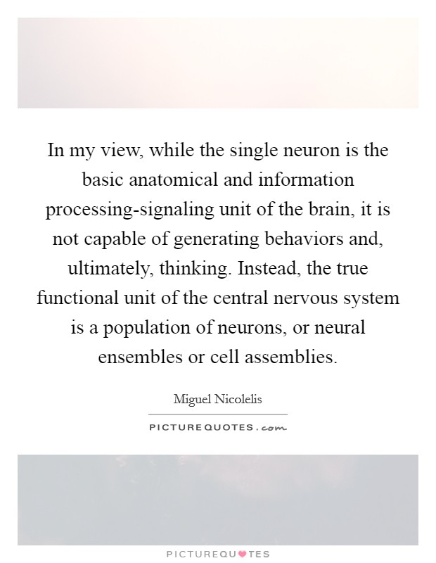 In my view, while the single neuron is the basic anatomical and information processing-signaling unit of the brain, it is not capable of generating behaviors and, ultimately, thinking. Instead, the true functional unit of the central nervous system is a population of neurons, or neural ensembles or cell assemblies Picture Quote #1