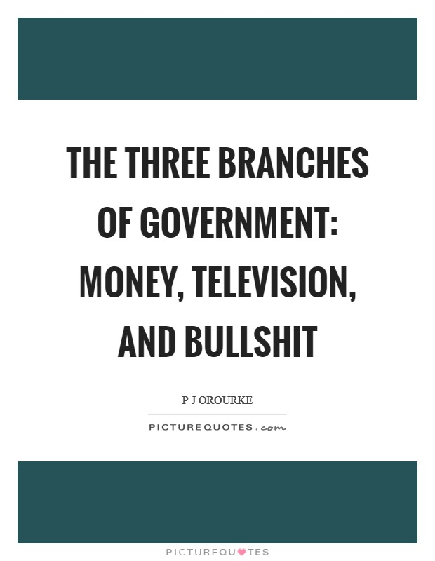 The Three Branches of Government: Money, Television, and Bullshit Picture Quote #1