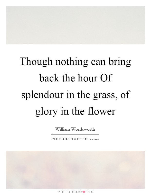 Though nothing can bring back the hour Of splendour in the grass, of glory in the flower Picture Quote #1