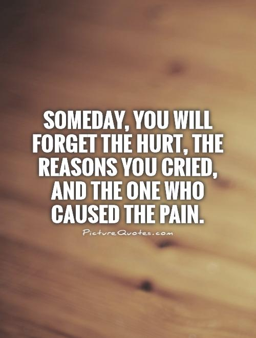 Someday, you will forget the hurt, the reasons you cried, and the one who caused the pain Picture Quote #1