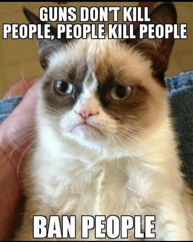 Guns don't kill people, people kill people. Ban people Picture Quote #1