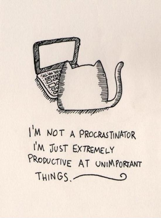 I'm not a procrastinator, I'm just extremely productive at unimportant things Picture Quote #1