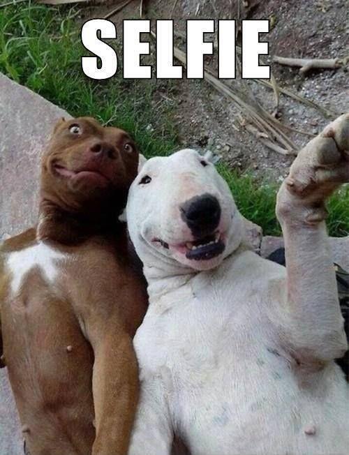 Selfie Picture Quote #1