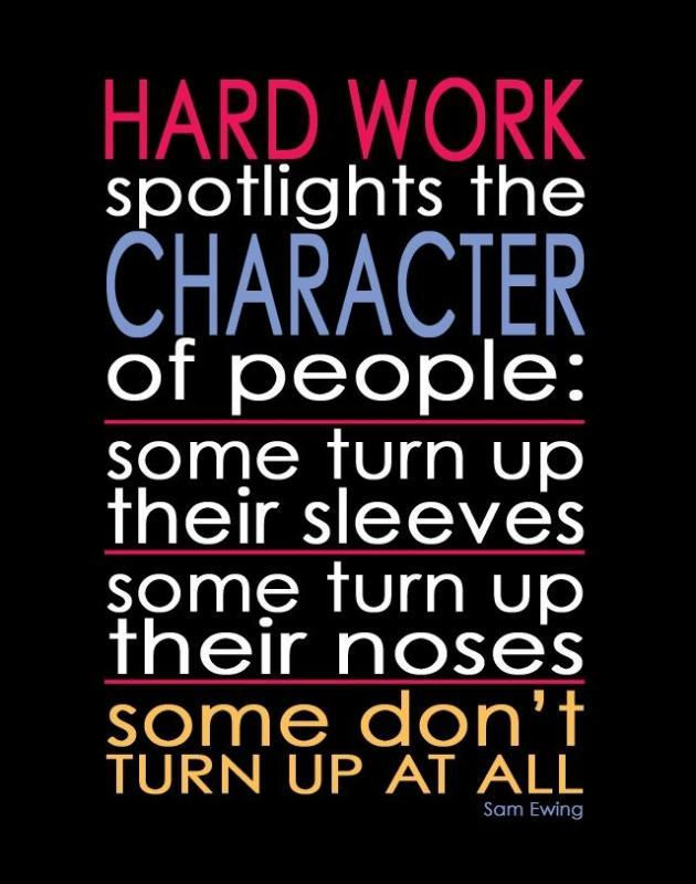 Hard work spotlights the character of people: some turn up their sleeves, some turn up their noses, and some don't turn up at all Picture Quote #1