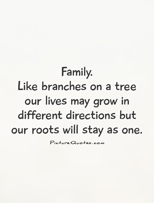 Family.  Like branches on a tree our lives may grow in different directions but our roots will stay as one Picture Quote #1
