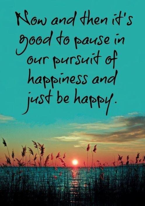 Now and then it's good to pause in our pursuit of happiness and just be happy Picture Quote #1