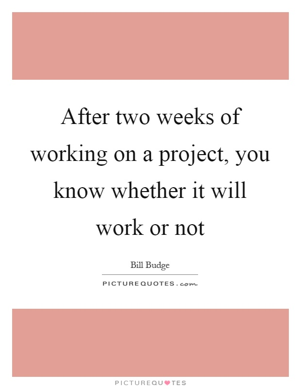 After two weeks of working on a project, you know whether it will work or not Picture Quote #1