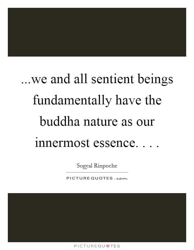 ...we and all sentient beings fundamentally have the buddha nature as our innermost essence. . .  Picture Quote #1