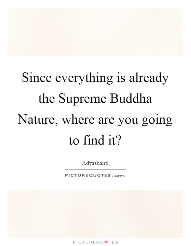 Since everything is already the Supreme Buddha Nature, where are you going to find it? Picture Quote #1