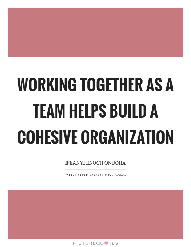 Working together as a team helps build a cohesive organization Picture Quote #1