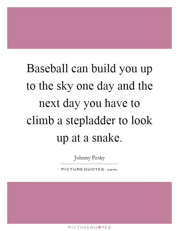Baseball can build you up to the sky one day and the next day you have to climb a stepladder to look up at a snake Picture Quote #1
