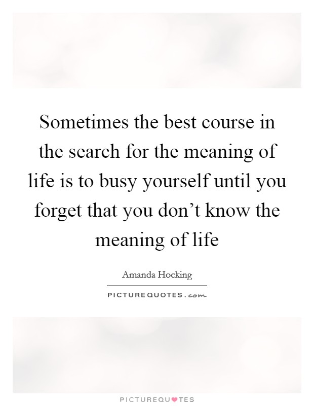 Sometimes the best course in the search for the meaning of life is to busy yourself until you forget that you don't know the meaning of life Picture Quote #1